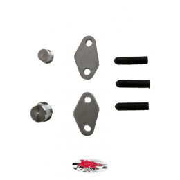 XRs Only Smog / Air Pump Block Off Kit - Honda XR650L