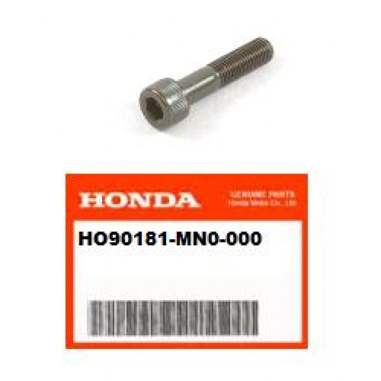 OEM Honda Socket Bolt 10X45 XR250R (96-04) XR400R (96-004) XR650R (00-07)