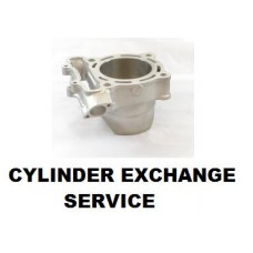 Service: CYLINDER EXCHANGE PROGRAM KX250F (08-10)