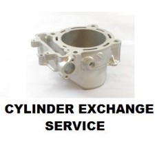 Service: CYLINDER EXCHANGE PROGRAM KX450F