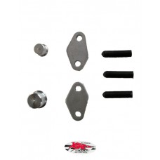 XRs Only Smog / Air Pump Block Off Kit - Honda XR650L (All Yrs)